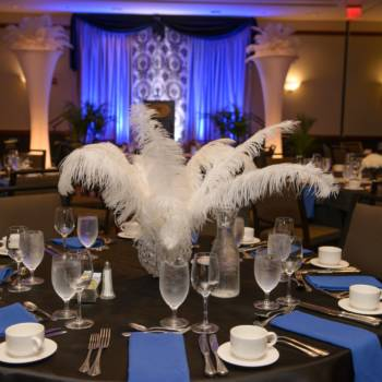 Fundraising Gala - Linens, and Centerpieces