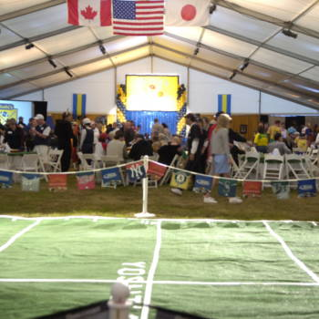 Sports Event Theme 14