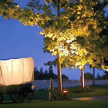 Western Themed Event Rental5