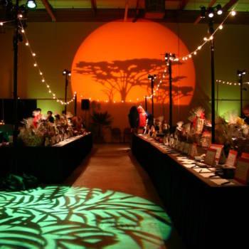Safari Themed Event Rental5