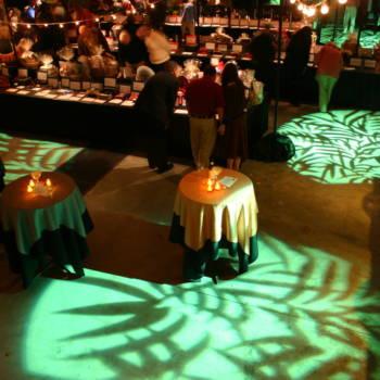 Safari Themed Event Rental7