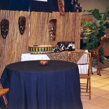 Safari Themed Event Rental10