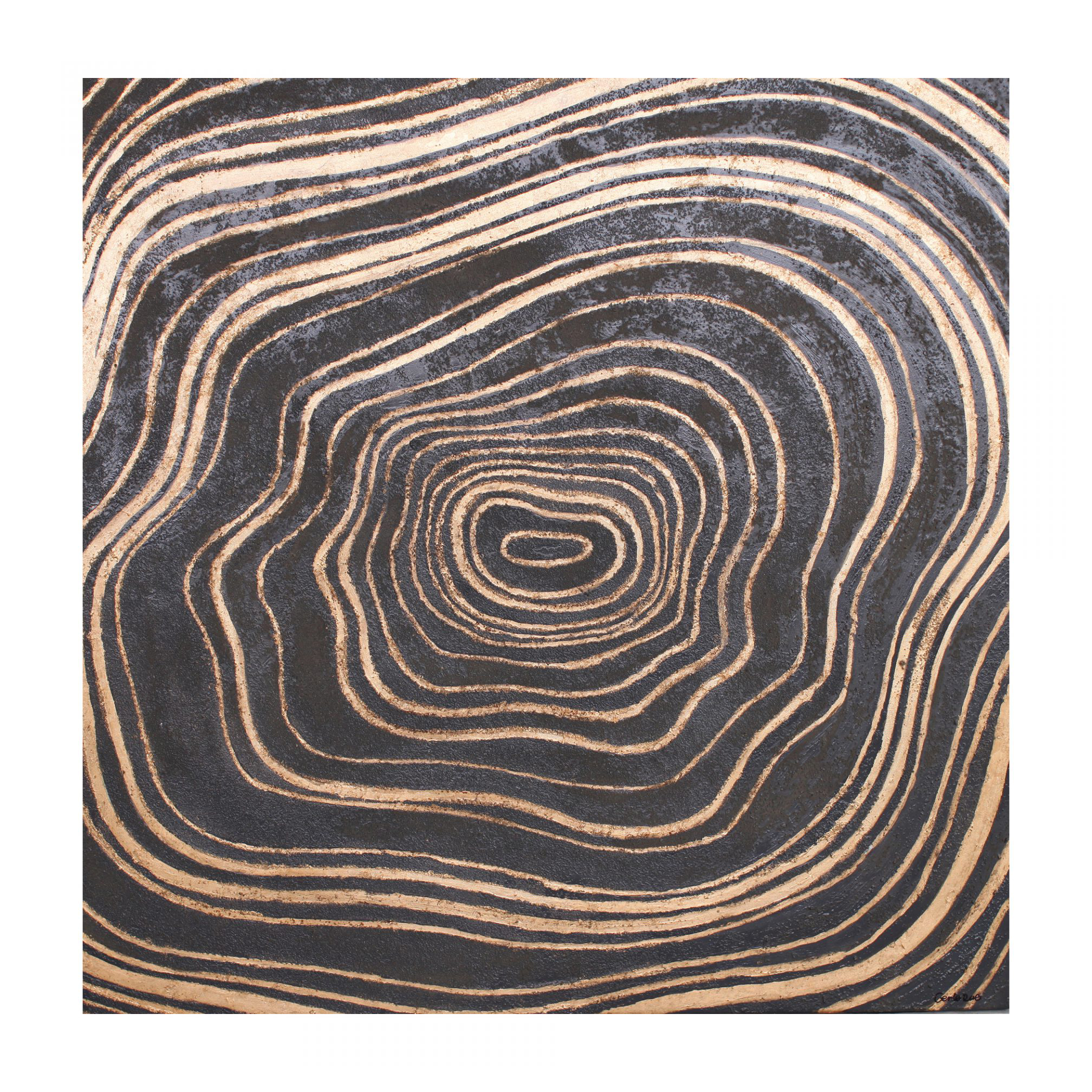 Tree Rings Wall Decor Peter Corvallis Productions Party